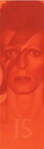 661 David Bowie