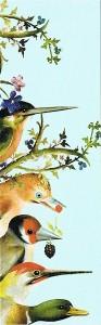 vogels 001
